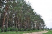 Участок 28 км от МКАД по Горьковскому шоссе, деревня Колонтаево - Фото 4