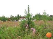 Продается участок, Щелковское шоссе, 93 км от МКАД - Фото 5