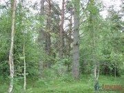 Земельные участки в Соловьево