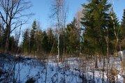 Лесной участок 25 соток в нии Радио - Фото 2