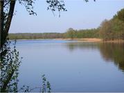 Участок на берегу внутреннего озера - Фото 3