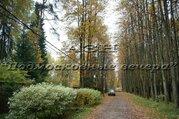 Калужское ш. 15 км от МКАД, Троицк, Участок 26 сот. - Фото 1