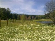 Продается земельный участок, с.Старогромово - Фото 2