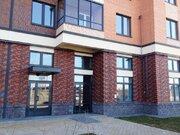 Аренда помещения в Новоселье в новом ЖК Ньюпитер, 50 кв.м. - Фото 1