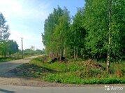 15 км от Старого Петергофа , Порзолово - Фото 4