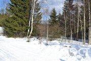 Лесной участок в отличном месте - Фото 3