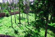 Лесной участок на Новой риге, кп Балтия, 40 соток - Фото 2