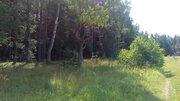 1 Га под ИЖС в деревне Новошихово, - Фото 2