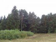 Участок с выходом в р.Волга, д.Нутромо 128 сот, газ, эл-во - Фото 3
