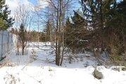 Лесной участок в отличном месте - Фото 5