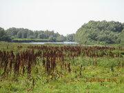 Земельный участок в Рассказихе - Фото 5