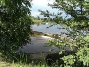 Участок на берегу реки, 24 сотки, МО, Рузский р-н, 100 км от МКАД. - Фото 5