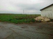 Продам нежилое помещение в Новых Бурасах Саратовской области - Фото 4