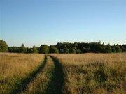 Земельный участок кфх - Фото 4
