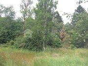 Продажа участка, Грибное, Выборгский район - Фото 1