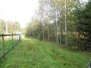 Участок 10 соток в массиве Кюльвия-2 Тосненского района - Фото 1