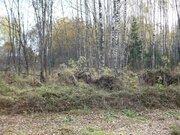 Земельный участок 12 соток 45 км.от МКАД - Фото 3
