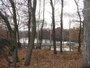 Каширское ш. 10 км. от МКАД, д.Богданиха, земельный участок - Фото 5