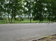 Можайское ш. 380 км от МКАД, Доманово, Участок 700 сот. - Фото 3