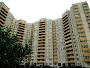 Продам квартиру с отличным ремонтом!, Купить квартиру в Санкт-Петербурге по недорогой цене, ID объекта - 318433533 - Фото 1