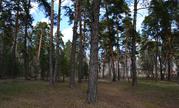 Лесной участок на высоком берегу р. Ока д. Лужки, Симферопольское шосс - Фото 4