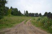 Участок сельхозназначения 1 га д. Красная горка - Фото 2