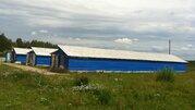 Кролиководческая ферма в западном Подмосковье - Фото 4