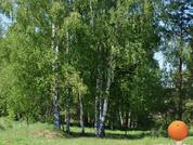 Продается участок, Щелковское шоссе, 95 км от МКАД - Фото 2