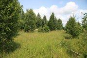 Земельный участок в c. Черленково, Шаховского района - Фото 2