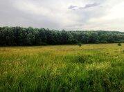 Земельный участок 25 соток д. Беляево Чеховский район - Фото 2