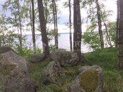 Продажа участка, Грибное, Выборгский район - Фото 4