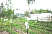 15 соток, СНТ Сватково-2, Сергиево-Посадский р-н - Фото 3