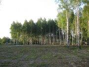 6 соток в 14 км от МКАД по Ленинградскому ш, д.Шемякино, ПМЖ - Фото 4