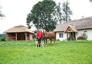Агро усадьба, Готовый бизнес в Беларуси, ID объекта - 100045072 - Фото 4