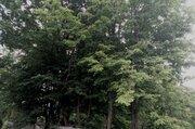 3 090 000 Руб., Продажа земельный участок 8 соток ИЖС Московская область Пушкинский ., Земельные участки Зеленоградский, Пушкинский район, ID объекта - 201575096 - Фото 2