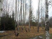 Продается земельный уч. 12 сот в СНТ Индустрия Наро-Фоминского р-а МО - Фото 1
