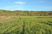 30,1 га окруженные р.Истра и лесом в 30 км по Новорижскому ш. - Фото 2