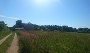 Живописный участок на берегу реки Ока в деревне Лужки, Симферопольское - Фото 5