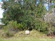 Продается участок в г. Палм Кост, Флорида США - Фото 2
