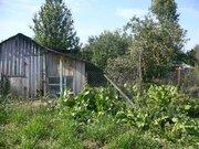 Эксклюзив! Продается участок в деревне Тимовка, живописные места. - Фото 3