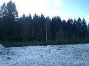 """Участок в экологически чистом коттеджном поселке """"телеши-1"""" - Фото 5"""