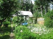 2 дачных дома на 9 сотках в Загорянке (Щелковский р-н) - Фото 3