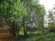 Продается участок в д. Муравьево, ИЖС, 65 км от МКАД - Фото 5