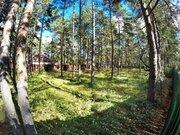 21 сотка соснового леса в 500 метрах от Финского залива. - Фото 2