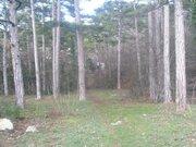 Земельный участок в г. Ялта, пгт. Массандра, пгт. Восход, 0,1000 га, - Фото 2