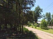 Лесной участок 10 соток д.Копнино ИЖС - Фото 3