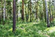 Срочная продажа земельного участка 10 соток - Фото 3