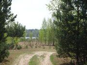 Участок у сан. Озеро Белое, Мещеры, 30 Га, Шатурский р-н - Фото 2