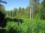 Живописный участок в Шарапово 12 соток - Фото 4