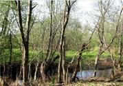 Большой и дешевый участок земли в жилой деревне Конаковского района
